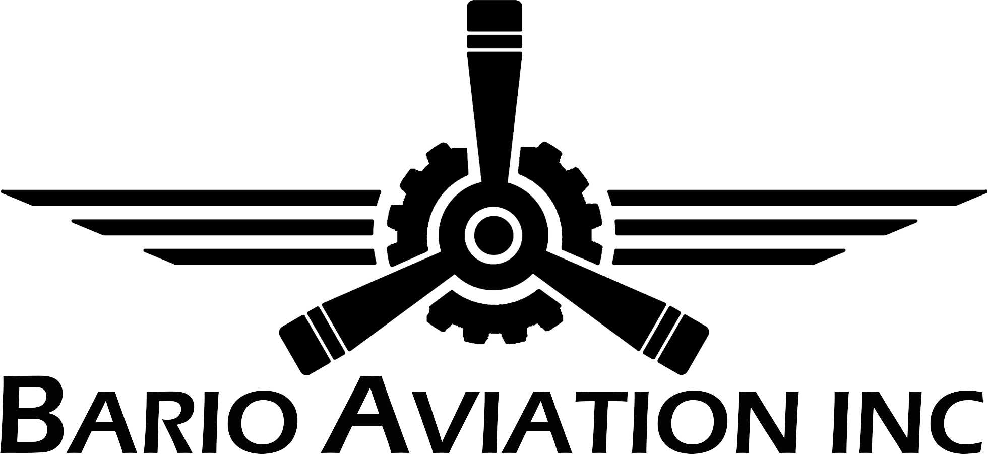 Bario Aviation Inc